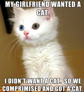 my-girlfriend-wanted-a-cat-meme